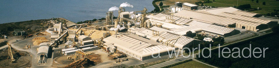 Nelson Pine Industries Limited