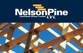 Nelson Pine Laminated Veneer Lumber (LVL)